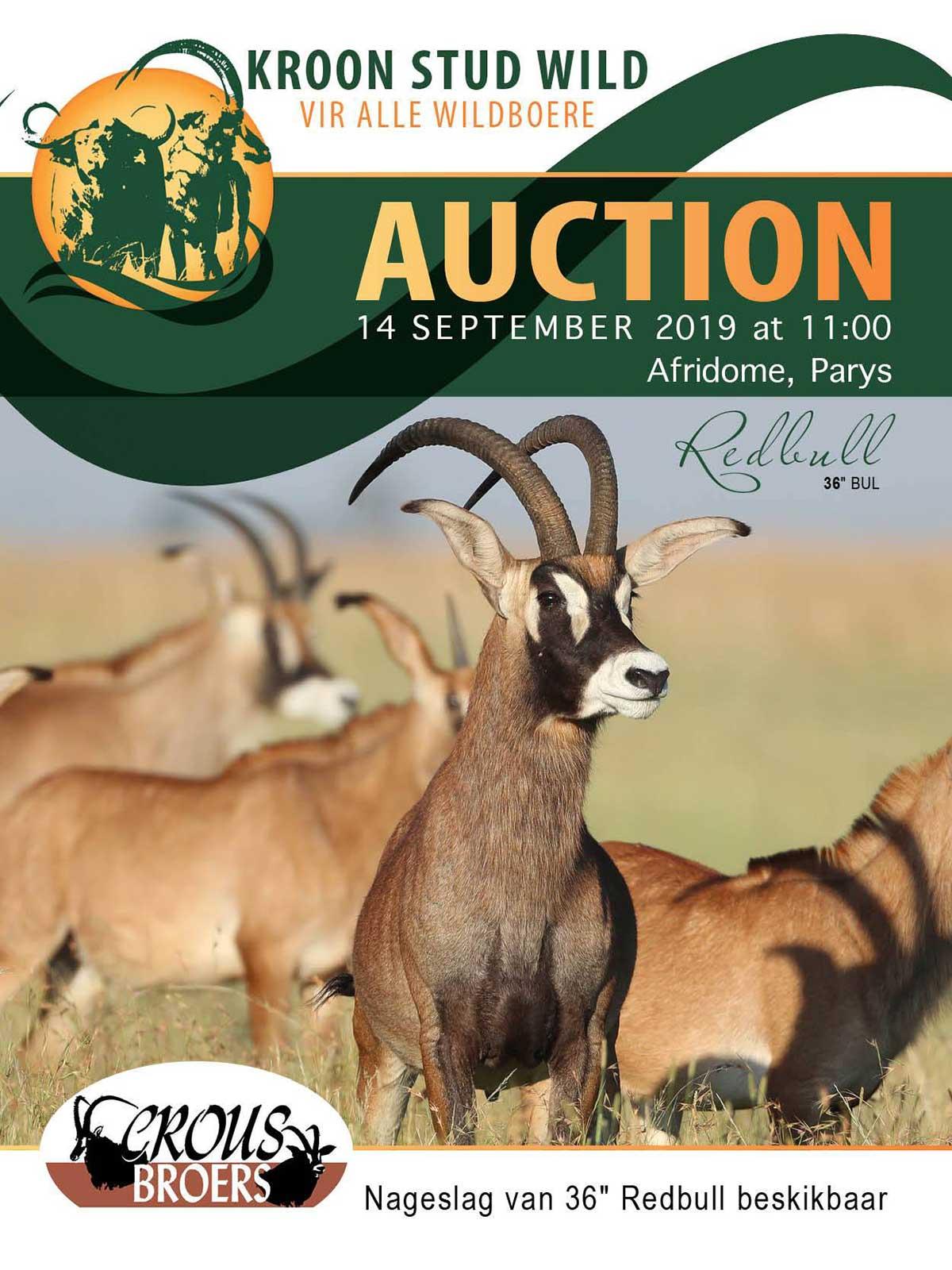 auctions-crousbroers-min